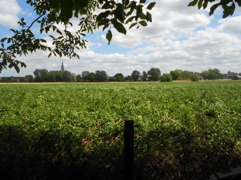 Vente maison 59320 Ennetieres en weppes - RARE corps de ferme flamand sur 1260m2